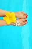 όμορφη θηλυκή λίμνη ποδιών Στοκ εικόνες με δικαίωμα ελεύθερης χρήσης