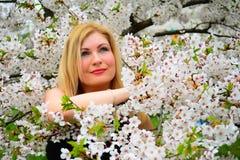 Όμορφη θηλυκή τοποθέτηση στον κήπο sakura Στοκ Εικόνα