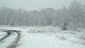 Όμορφη θύελλα χιονιού χειμερινών τοπίων με τα δέντρα απόθεμα βίντεο