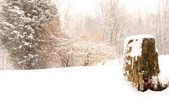 Όμορφη θύελλα στοκ φωτογραφίες με δικαίωμα ελεύθερης χρήσης