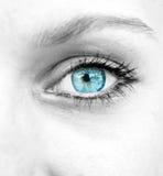 όμορφη διανυσματική γυναίκα απεικόνισης μπλε ματιών Στοκ Εικόνες
