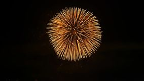 Όμορφη ιαπωνική φωτεινή ελαφριά ζωηρόχρωμη έκρηξη πυροτεχνημάτων στο σκοτεινό νυχτερινό ουρανό πέρα από τη μεγάλη πόλη κατά 4k τη απόθεμα βίντεο