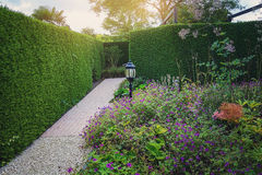 Όμορφη ιδέα κήπων Στοκ Φωτογραφία