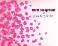 Όμορφη κάρτα με τα ροδαλά πέταλα λεπτομερές ανασκόπηση floral διάνυσμα σχεδίων απεικόνιση αποθεμάτων