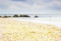 Όμορφη κίτρινη αμμώδης παραλία Στοκ Εικόνες