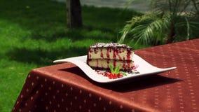 Όμορφη και εύγευστη πίτα βακκινίων απόθεμα βίντεο
