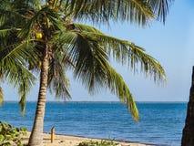 Όμορφη καραϊβική θέα με το τυρκουάζ νερό στο isla SAN Pedro στοκ εικόνες με δικαίωμα ελεύθερης χρήσης