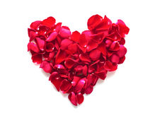 Όμορφη καρδιά των κόκκινων ροδαλών πετάλων Στοκ εικόνα με δικαίωμα ελεύθερης χρήσης