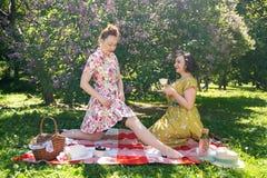 Όμορφη καρφίτσα δύο επάνω στις κυρίες που έχουν το συμπαθητικό πικ-νίκ στο πάρκο πόλεων σε μια ηλιόλουστη ημέρα από κοινού οι φίλ στοκ εικόνες
