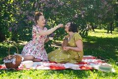 Όμορφη καρφίτσα δύο επάνω στις κυρίες που έχουν το συμπαθητικό πικ-νίκ στο πάρκο πόλεων σε μια ηλιόλουστη ημέρα από κοινού οι φίλ στοκ εικόνα