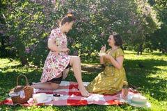 Όμορφη καρφίτσα δύο επάνω στις κυρίες που έχουν το συμπαθητικό πικ-νίκ στο πάρκο πόλεων σε μια ηλιόλουστη ημέρα από κοινού οι φίλ στοκ φωτογραφίες με δικαίωμα ελεύθερης χρήσης