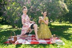 Όμορφη καρφίτσα δύο επάνω στις κυρίες που έχουν το συμπαθητικό πικ-νίκ στο πάρκο πόλεων σε μια ηλιόλουστη ημέρα από κοινού οι φίλ στοκ εικόνα με δικαίωμα ελεύθερης χρήσης
