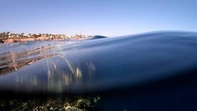 Όμορφη κοραλλιογενής ύφαλος κοντά στην ακτή, αναμμένη από το φως του ήλιου σε αργή κίνηση φιλμ μικρού μήκους