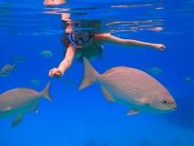 Όμορφη κολύμβηση με αναπνευστήρα κοριτσιών στοκ φωτογραφίες με δικαίωμα ελεύθερης χρήσης