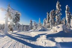 Όμορφη κρύα θέα βουνού του χιονοδρομικού κέντρου, ηλιόλουστο πνεύμα χειμερινής ημέρας Στοκ φωτογραφία με δικαίωμα ελεύθερης χρήσης
