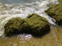 Όμορφη κυματωγή θάλασσας Στοκ φωτογραφία με δικαίωμα ελεύθερης χρήσης