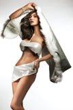 όμορφη κυρία brunette Στοκ φωτογραφίες με δικαίωμα ελεύθερης χρήσης