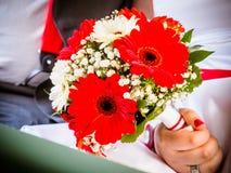 Όμορφη κόκκινη γαμήλια ανθοδέσμη στα χέρια της νύφης Γαμήλια ανθοδέσμη των κόκκινων gerberas Στοκ φωτογραφίες με δικαίωμα ελεύθερης χρήσης