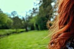 Όμορφη κόκκινη τρίχα και συμπαθητικό blury υπόβαθρο στοκ φωτογραφία