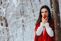 Όμορφη λευκιά σαν το χιόνι πριγκήπισσα στη χώρα των θαυμάτων χειμερινού παραμυθιού Στοκ φωτογραφία με δικαίωμα ελεύθερης χρήσης