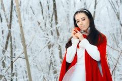 Όμορφη λευκιά σαν το χιόνι πριγκήπισσα στη χώρα των θαυμάτων χειμερινού παραμυθιού Στοκ Εικόνα