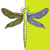 Όμορφη λιβελλούλη με τα ζωηρόχρωμα φτερά Κάρτα αντίθεσης σύρετε το έγγραφο χεριών watercolours Στοκ εικόνα με δικαίωμα ελεύθερης χρήσης