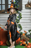 Όμορφη μάγισσα αποκριών Στοκ Εικόνα