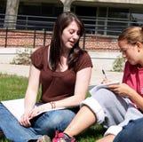 όμορφη μελέτη σπουδαστών στοκ εικόνα