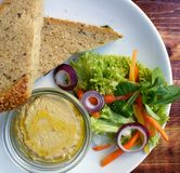 Όμορφη μερίδα του hummus και της σαλάτας Στοκ εικόνες με δικαίωμα ελεύθερης χρήσης