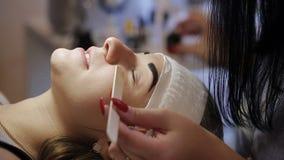 Όμορφη νέα γυναίκα με την επέκταση eyelash Μάτι γυναικών με τα μακροχρόνια eyelashes Επέκταση Beautician eyelash για τις νεολαίες απόθεμα βίντεο