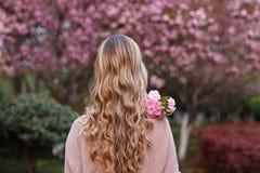 Όμορφη νέα γυναίκα με τη μακριά σγουρή ξανθή τρίχα από τον πίσω ανθίζοντας κλάδο εκμετάλλευσης του δέντρου sakura στοκ φωτογραφία