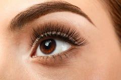 Όμορφη νέα γυναίκα με τις επεκτάσεις eyelash, στοκ φωτογραφίες