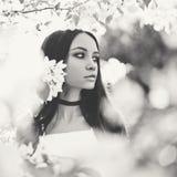 Όμορφη νέα γυναίκα που περιβάλλεται από τα λουλούδια του Apple-δέντρου Στοκ φωτογραφία με δικαίωμα ελεύθερης χρήσης