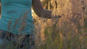 Όμορφη νέα γυναίκα που περπατά στον τομέα με την ψηλή χλόη που απολαμβάνει τη φύση υπαίθρια φιλμ μικρού μήκους