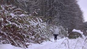 Όμορφη νέα γυναίκα στο γκρίζο σακάκι που περπατά σε έναν όμορφο χιονώδη χειμερινό δασικό 4K πυροβολισμό απόθεμα βίντεο