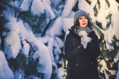 Όμορφη νέα γυναίκα στο πάρκο τη χιονίζοντας χειμερινή ημέρα Στοκ εικόνα με δικαίωμα ελεύθερης χρήσης