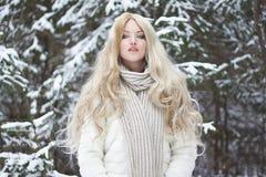 Όμορφη νέα γυναίκα στο παλτό και το μαντίλι γουνών Στοκ φωτογραφία με δικαίωμα ελεύθερης χρήσης