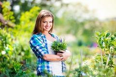 Όμορφη νέα κηπουρική γυναικών Στοκ φωτογραφία με δικαίωμα ελεύθερης χρήσης