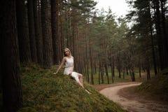 Όμορφη νέα ξανθή συνεδρίαση γυναικών στη δασική νύμφη στο άσπρο φόρεμα στο αειθαλές ξύλο στοκ φωτογραφίες με δικαίωμα ελεύθερης χρήσης