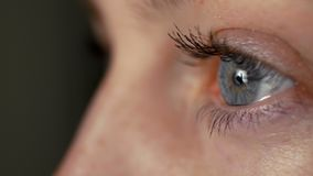Όμορφη νέα χρωστική ουσία γυναικών eyelashes φιλμ μικρού μήκους