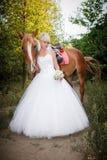Όμορφη νύφη με το καφετί άλογο Στοκ φωτογραφίες με δικαίωμα ελεύθερης χρήσης