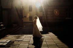 Όμορφη νύφη παραμυθιού στο εκλεκτής ποιότητας άσπρο περπάτημα γαμήλιων φορεμάτων Στοκ Εικόνες