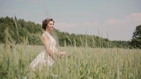 Όμορφη νύφη που στέκεται σε έναν τομέα σίτου σε ένα αρκετά άσπρο γαμήλιο φόρεμα στο καλοκαίρι Ο αέρας φυσά την τρίχα και τους κών απόθεμα βίντεο