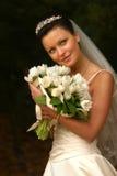 όμορφη νύφη Στοκ Εικόνα