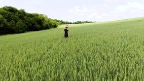 Όμορφη ξένοιαστη γυναίκα που απολαμβάνει τη φύση και το φως του ήλιου στον τομέα σίτου απόθεμα βίντεο