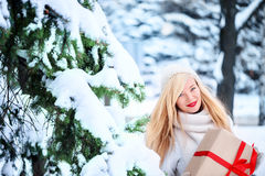 όμορφη ξανθή καυκάσια γυν&alp στοκ εικόνα
