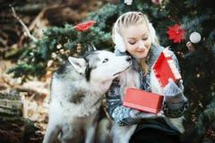 Όμορφη ξανθή συνεδρίαση στο χειμερινό πάρκο και εξέταση σιβηρικό γεροδεμένο Σύμβολο του νέου έτους 2018 Στοκ Φωτογραφία