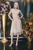 Όμορφη ξανθή τοποθέτηση γυναικών στο ρόδινο φόρεμα στοκ εικόνες