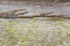 Όμορφη ξύλινη σύσταση υποβάθρου Στοκ Φωτογραφίες