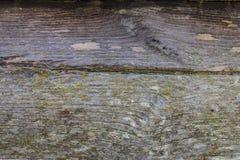 Όμορφη ξύλινη σύσταση υποβάθρου Στοκ Εικόνα